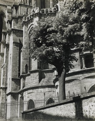 curved and straight block walls, balconies and columns of church behind trees at center and R; iron fence and brick-topped wall at bottom