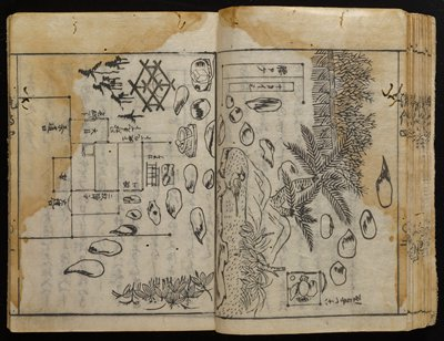 numbers three-four of six volumes; woodblock printed books with text and diagrams, with many examples of flower arrangement; tan cover on book; books travel in folding navy blue case