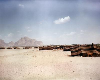 Color photograph of brown striped tents pitched on a sandy plateau; brown dog along right side of image; tall rock formations in background along L side