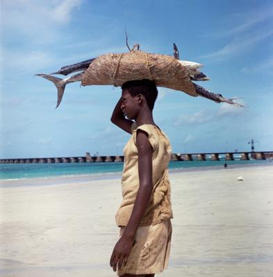 Color photograph of a man on a beach with a basket of fish balanced on his head