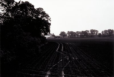 Light plow marks visible in an empty field; muddy curving tracks in front; trees at left in a line in background at right with a barn and 2 sheds at center
