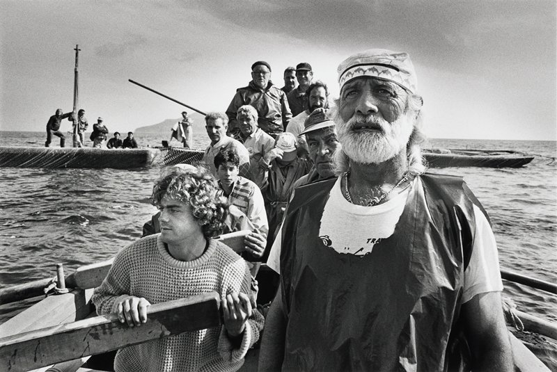 group of fishermen in boat hauling nets; other boats in background