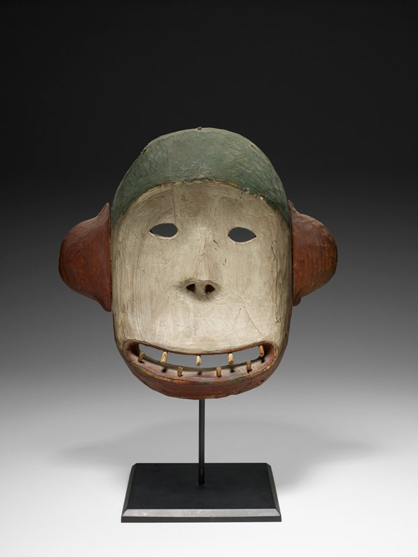 rounded, concave face; rounded ears on sides of head; wide, open, ovoid mouth with eight peg teeth; small eyes; rather flat nose with triangular nostrils; top of head is green; face is white; mouth, chin and ears are rust red