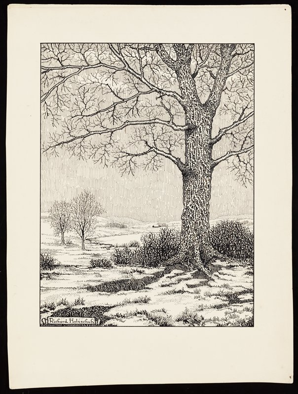 bare trees in a landscape with spotty snow on ground; large tree at right in foreground; small house at center