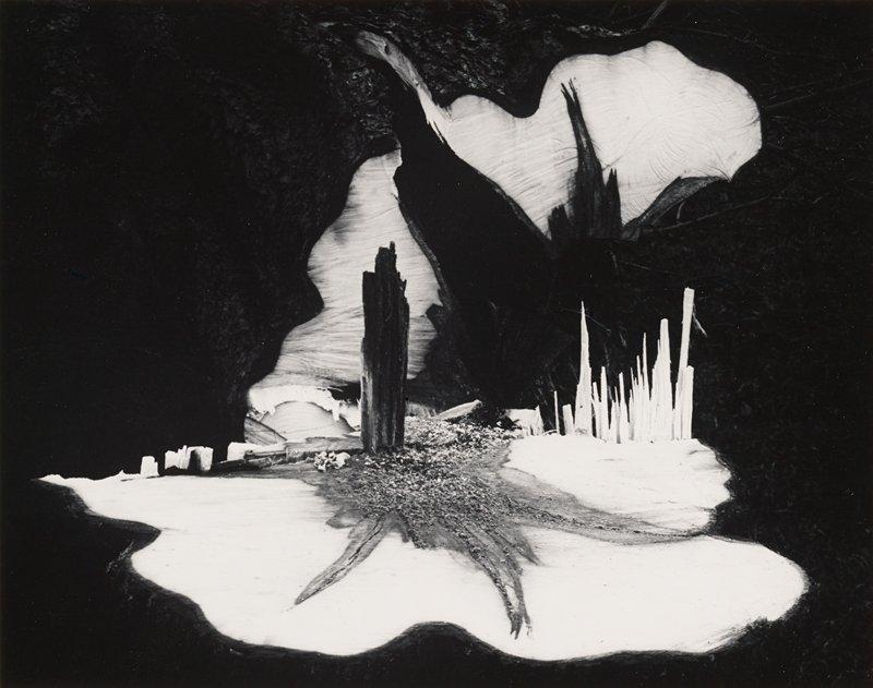 abstract image; tree stump with splinters sticking up; dark form, URQ; dark splinter near center