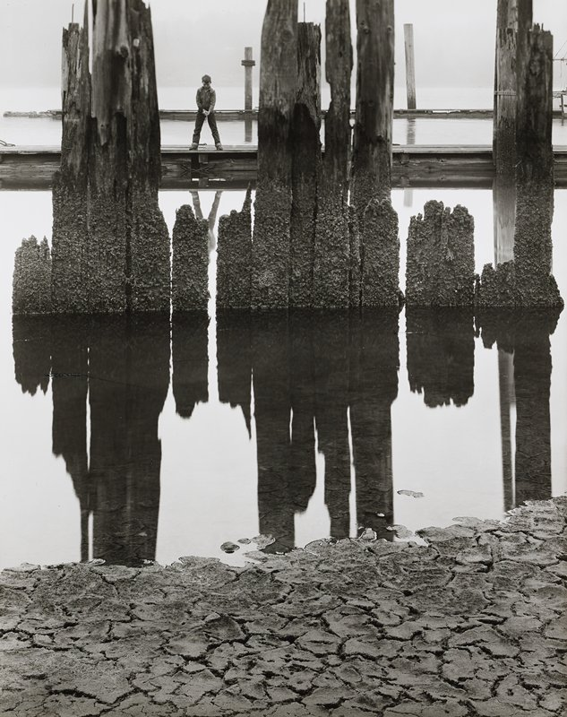 boy with fishing pole standing with his feet apart on dock, looking down into water, ULQ; cracked dry soil in foreground at bottom; rotted wood pilings of various lengths, covered in moss, reflected in water, at center