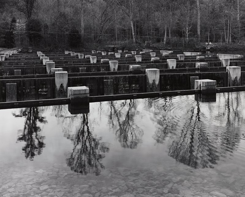 trees reflected in water at front; concrete pillars in middle ground; two men in background sitting at water's edge, URQ