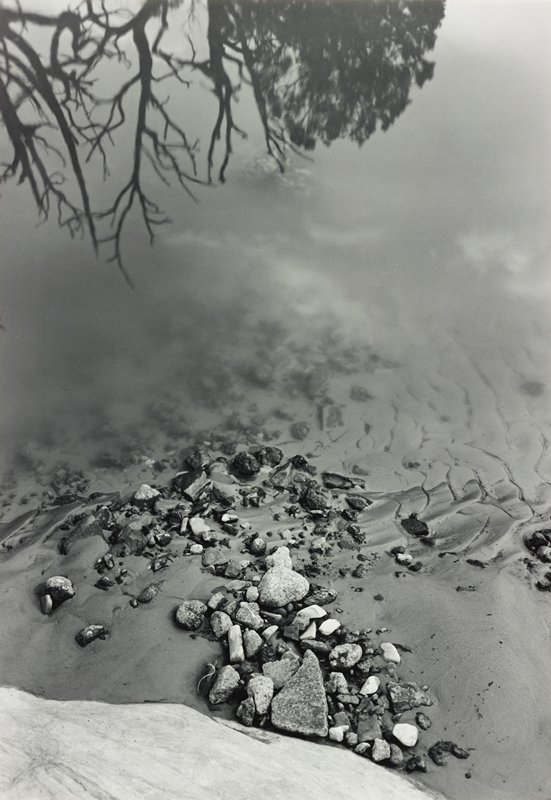 rocks of various sizes, shapes and colors at edge of cloudy water; reflection of tree branches at top