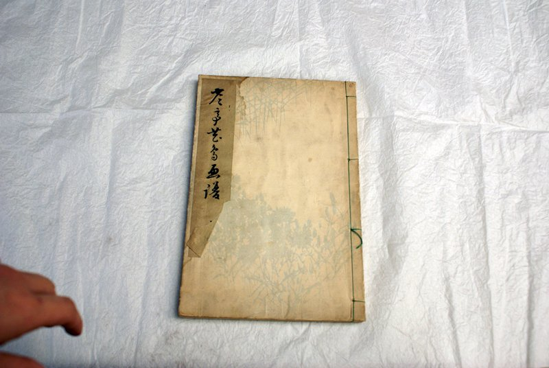 bound book with colorful images of various and animals including birds, frogs, turtles, and crabs; cover is beige with pale blue flowers and reeds