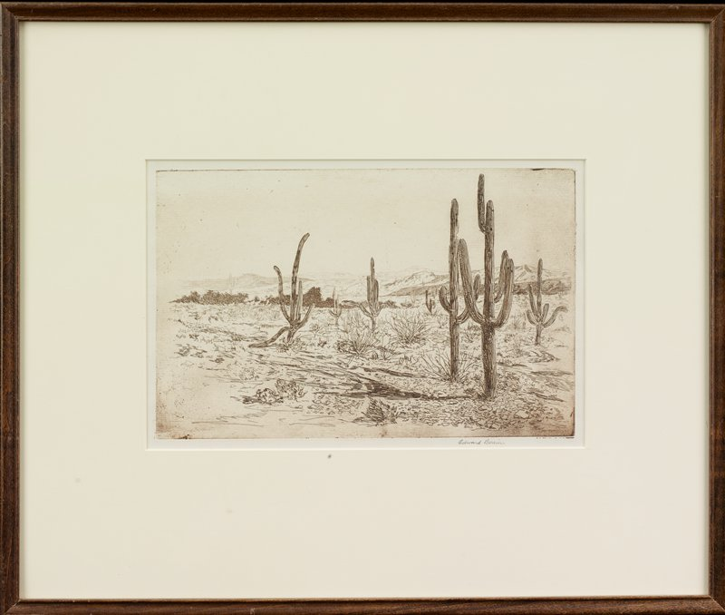 cacti in desert landscape with mountains