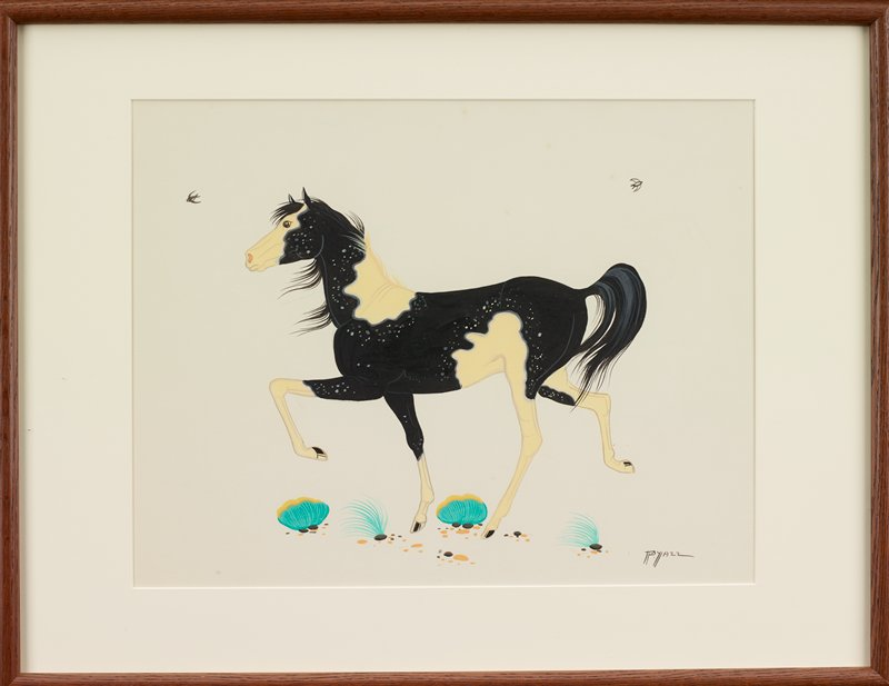 black and white horse in profile from PL, with some grey spots; several scrubby plants; two birds flying in sky; white negative space; white cloud-like outline behind horse's head