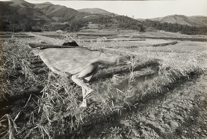 figure in a plowed field with thin dried plants, with only top of head with hair and bare legs and buttocks visible--midbody covered with swirling flowered garment; mountains with trees in background