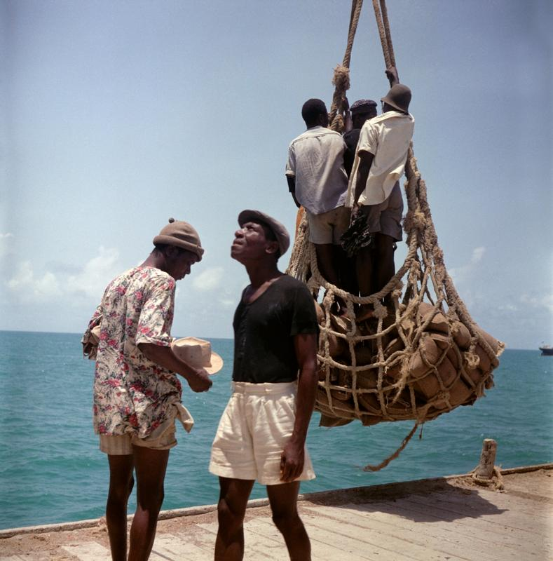 Color image of a scene on a pier; three men stand in a net suspended over the deck; one man looks down at his hat and the man in the foreground looks up and to the viewer's left