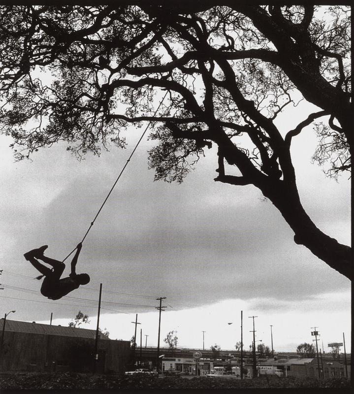 black and white image of a boy in silhouette swinging from a rope in a tree, also in silhouette