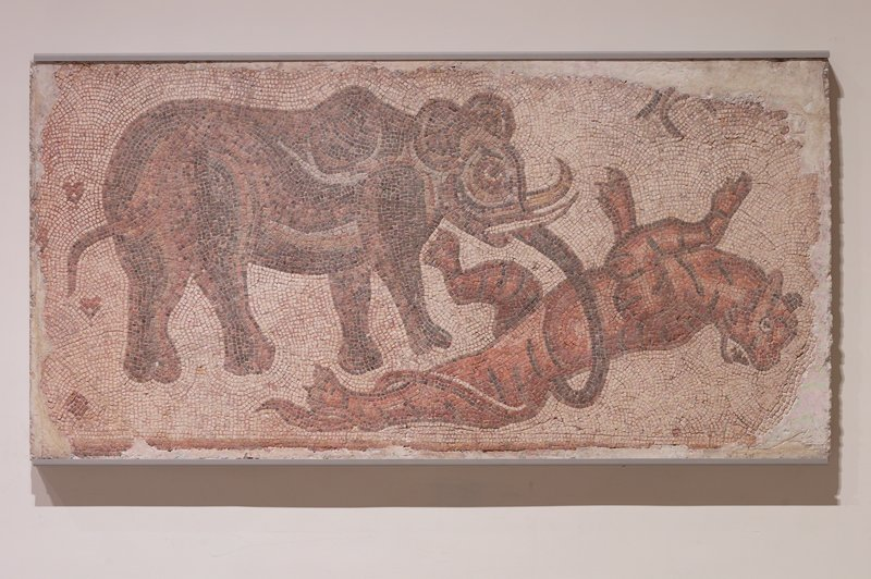 mosaic representing a scene of an elephant attacking a feline, in multicolors.; known to have come from the floor of an early Christian church near Antioch