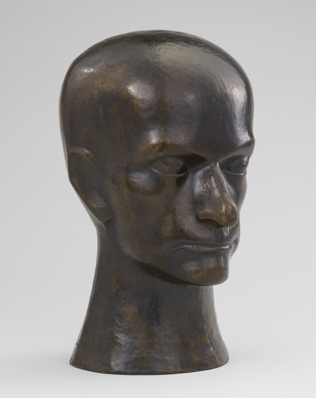 large head with thick features and wide cranium on a thick neck; flat ears