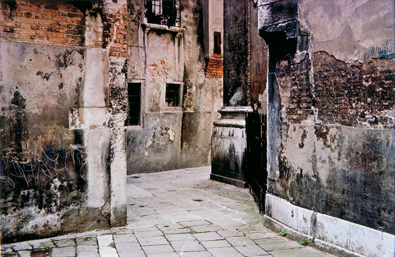 alley with green moss, Venice