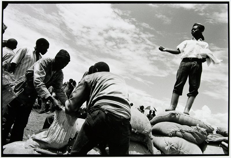 man standing on pile of large bags with other people filling small bags