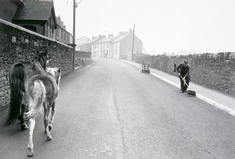two horses walking up street at lower left; man cleaning street on other side of road.