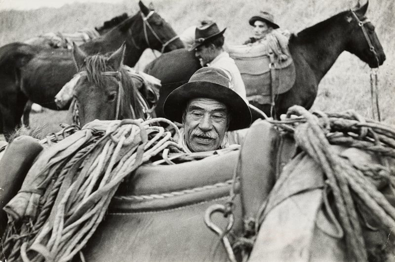 man's head, with white mustache and hat, visible over a horse's saddle; 3 other horses and 2 other men in background