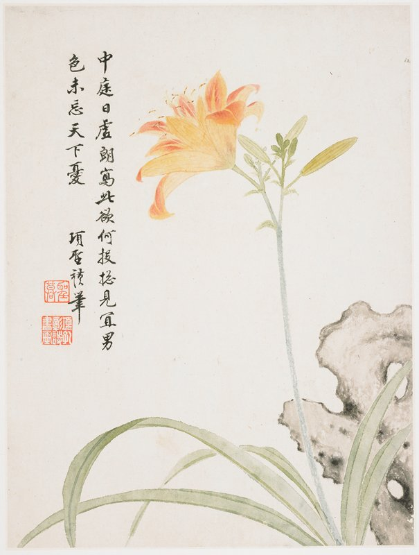 large orange and pink flower on top of a blueish stem, with 4 buds; rock behind flower in LRC; inscription and 2 seals at left