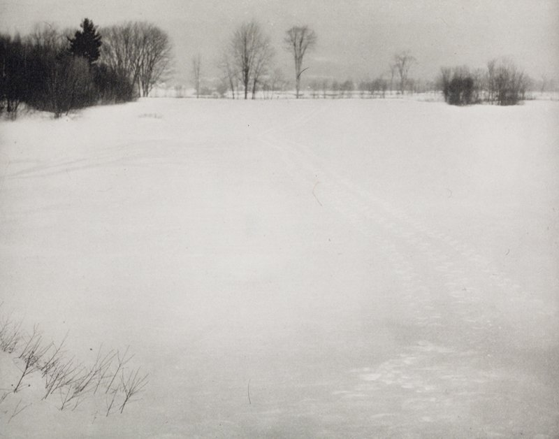 snowy open field with tracks; bare trees at L and in background