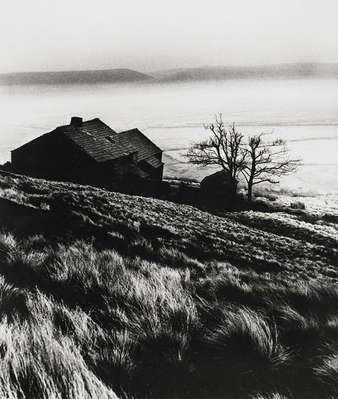 view from the top of a grassy hill down into a foggy valley; three buildings on slope of hill; two bare trees